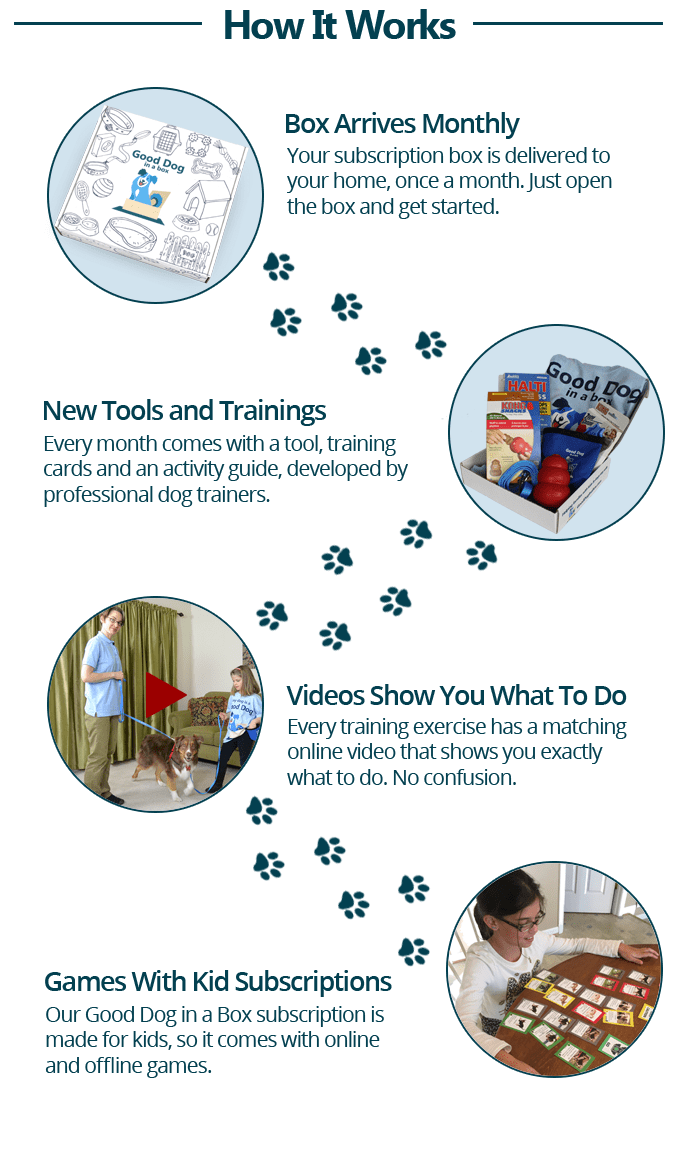How the dog training subscription works
