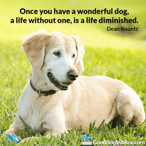 Dog Quotes Dean Koontz