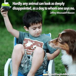 Dog Quotes Jeffrey Masson