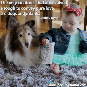 Dog Quotes Johnny Depp