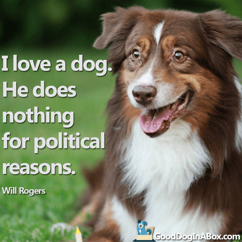 Dog Quotes Will Rogers