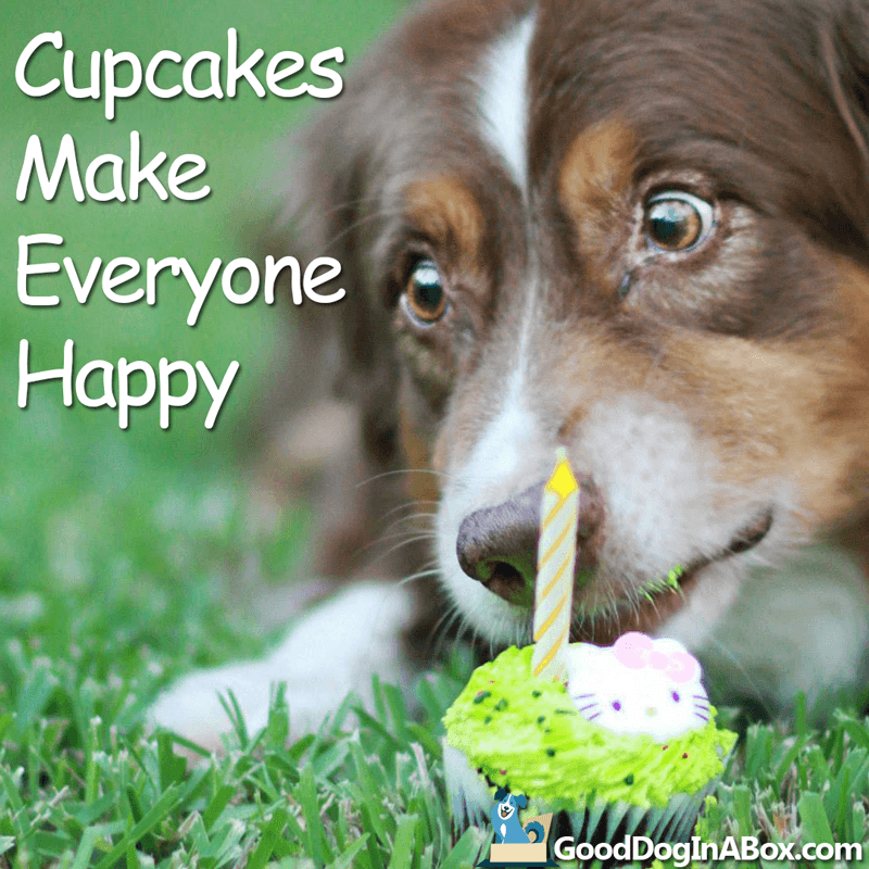 Dog Quotes Cupcakes