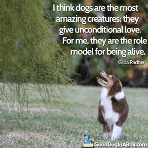 Dog Quotes Images Gilda Radner