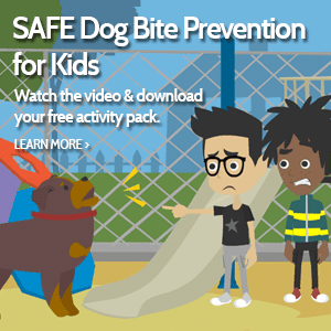 SAFE Dog Bite Prevention Program for Kids Ad
