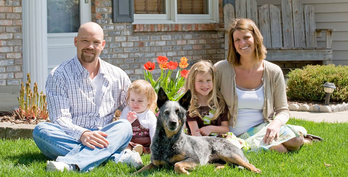 5 Ways to Find the Best Family Dogs