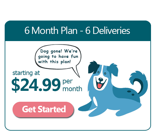 6 Month Dog Training Subscription