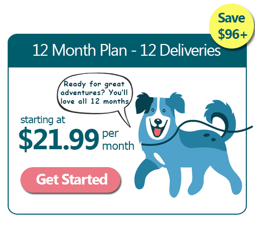 Good Dog 12 Month Subscription