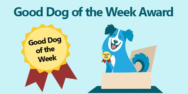 Good Dog of the Week Award