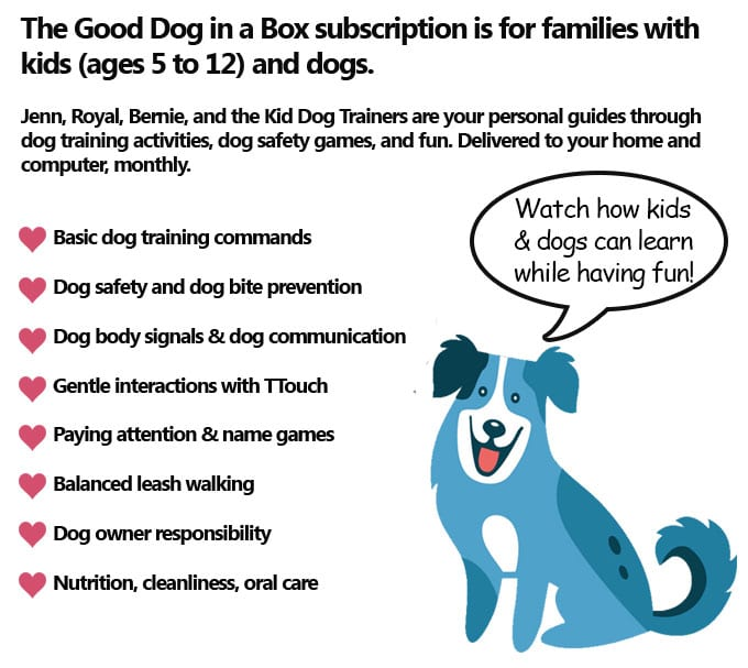 Good Dog in a Box Subscription Details
