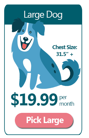Large Dog - $19.99 a month