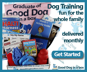 Dog training fun for the whole family
