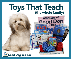 Dog toys that teach