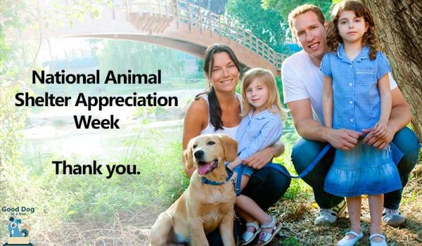 Animal Shelter Appreciation Week