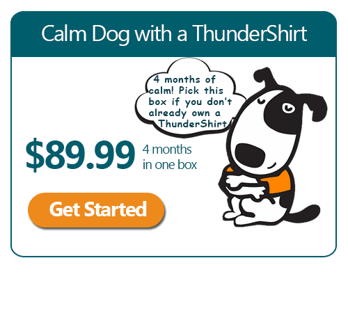 Calm Dog Box with a Thundershirt