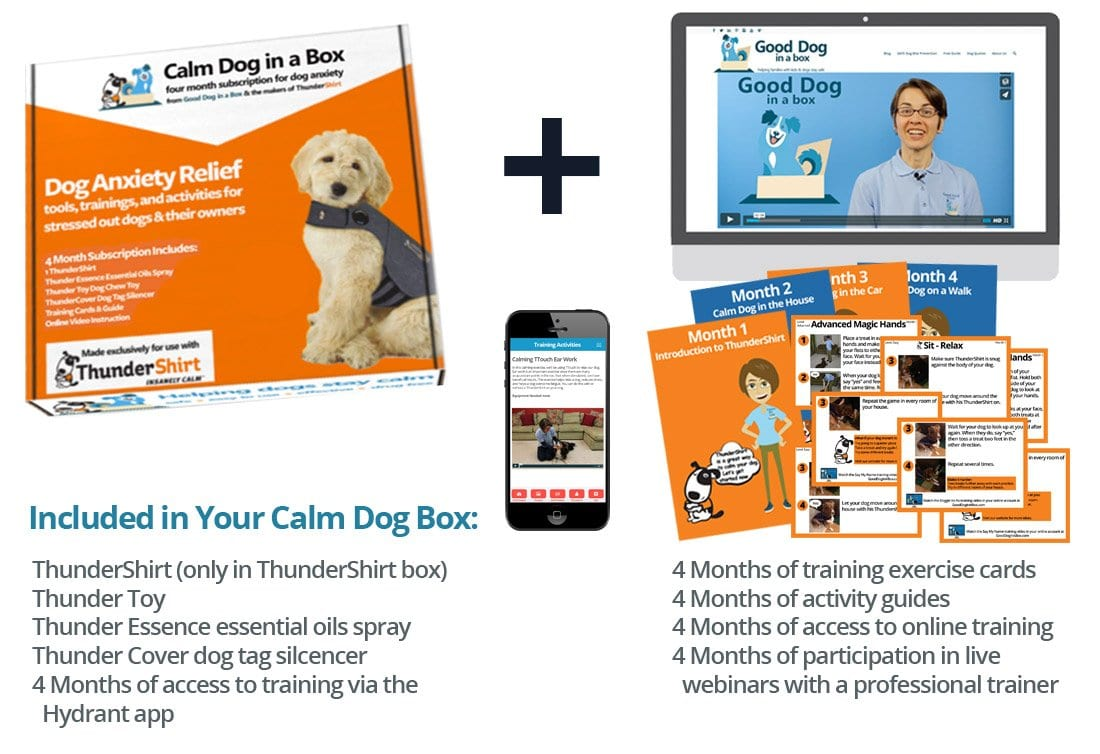 Calm Dog in a Box anxiety relief for dogs