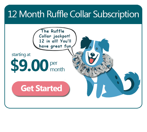 12 Month Ruffle Dog Collar Subscription