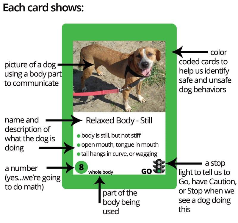 Dog Smart Card
