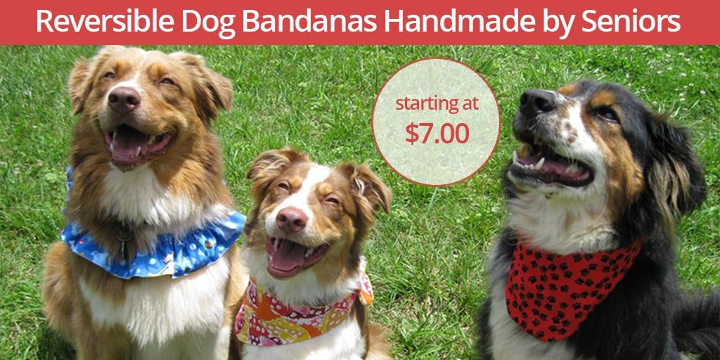 Handmade Reversible Pet Bandanas