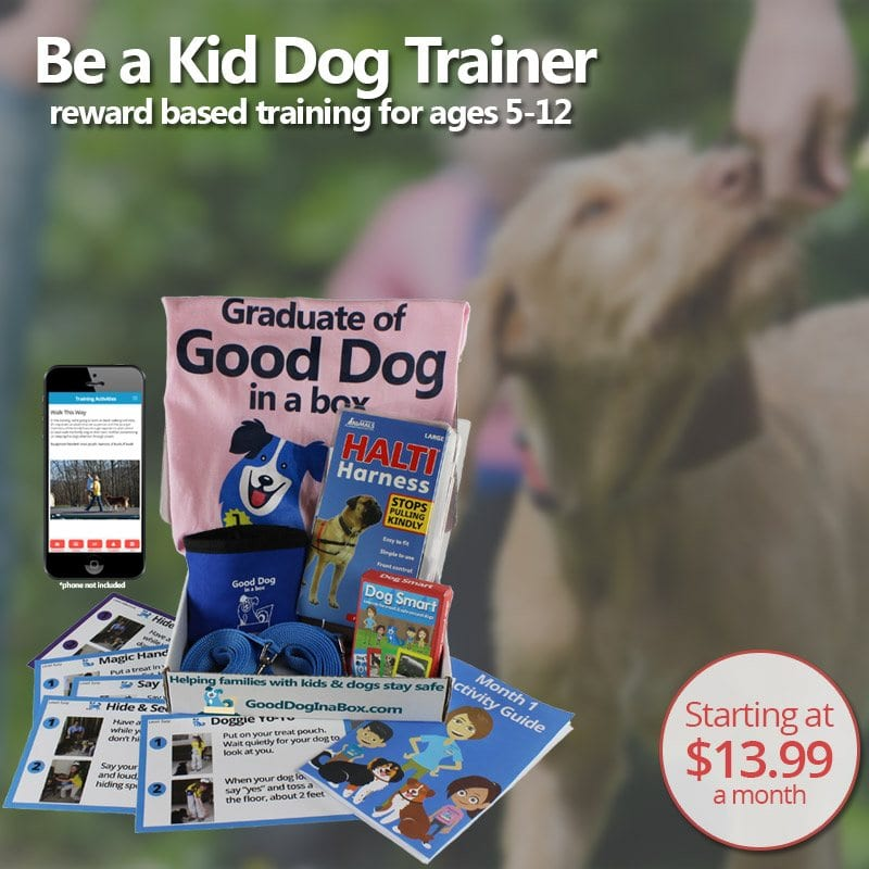 Good Dog in a Box Dog Training Subscription for Kids