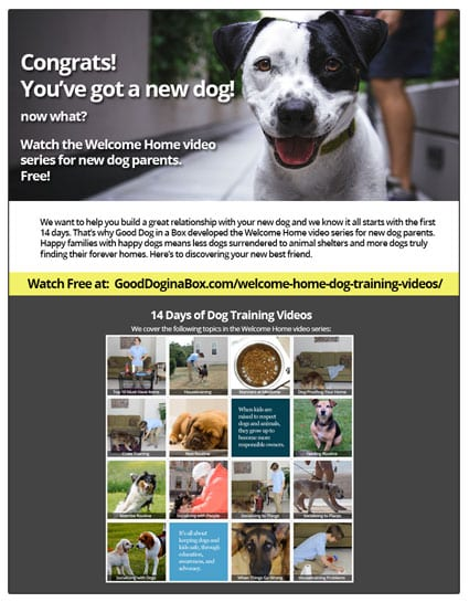 Welcome Home Flyer - Download Free