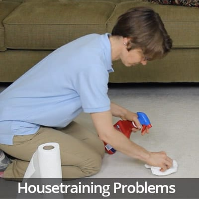 Welcome Home Housetraining Problems Video