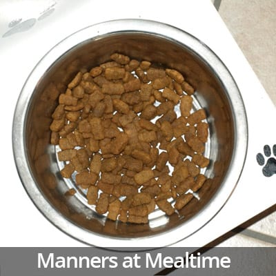 Welcome Home Manners at Mealtime Video