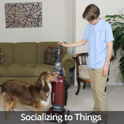 Welcome Home Socializing to Things Video