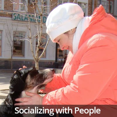 Welcome Home Socializing with People Video