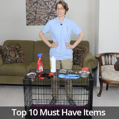 Welcome Home Top 10 Must Have Items for a New Dog Video