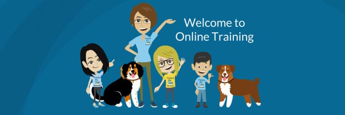 Welcome to Online Training