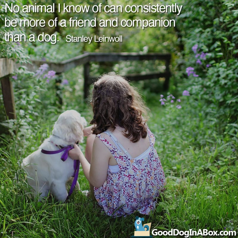 Quotes About Dogs From Good Dog In A Box Mesmerizing Quotes About A Girl And Her Dog