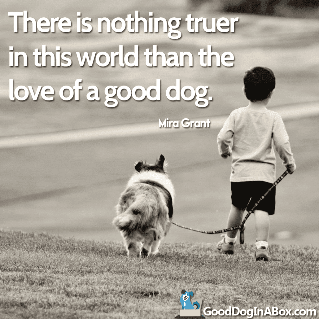 Dog Love Quotes Best Dog Quotesmira Grant From Good Dog In A Box
