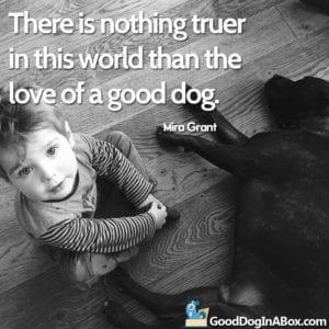 Dog Quotes Black Lab Little Boy