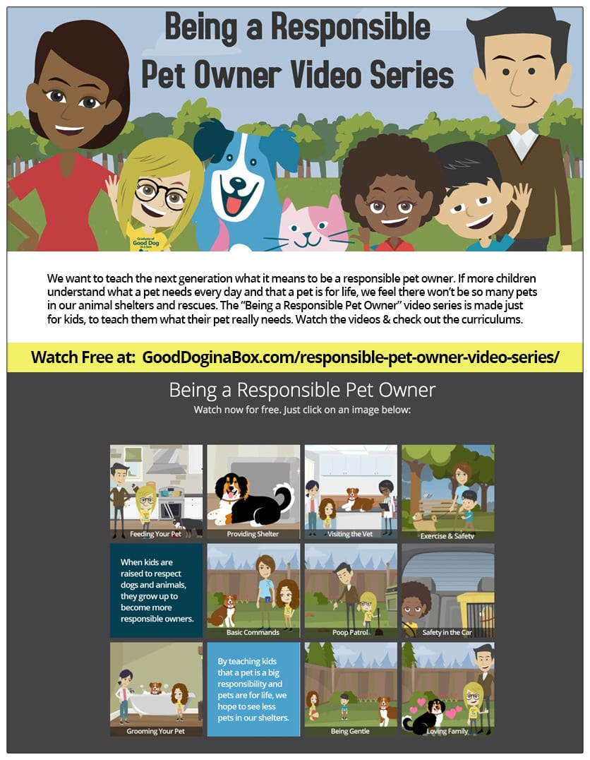 Being a Responsible Pet Owner Video Series Flyer