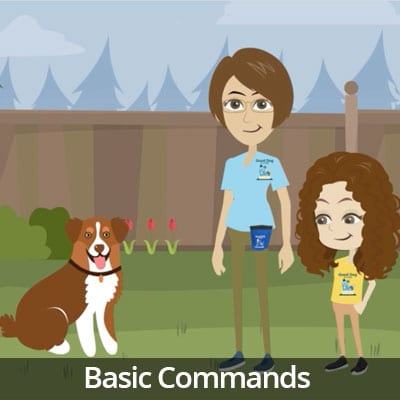 Being a Responsible Pet Owner Video Series: Basic Commands