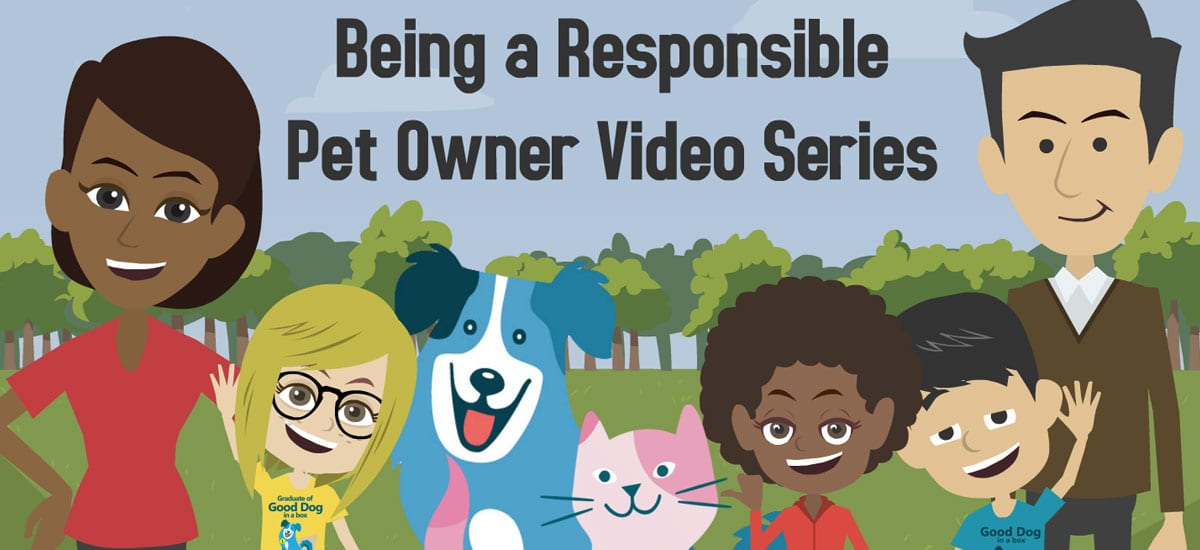 how to be a responsible pet owner Make the world a better place for pets and people by being a caring, responsible  pet owner find tips on responsible pet ownership on our.