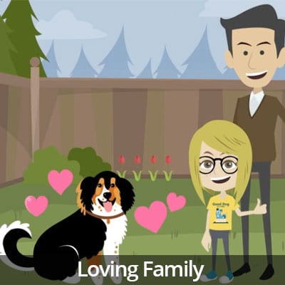 Being a Responsible Pet Owner Video Series: Loving Family