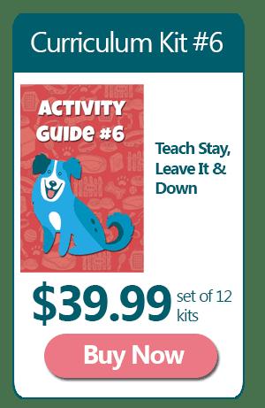Dog Training Curriculum 6