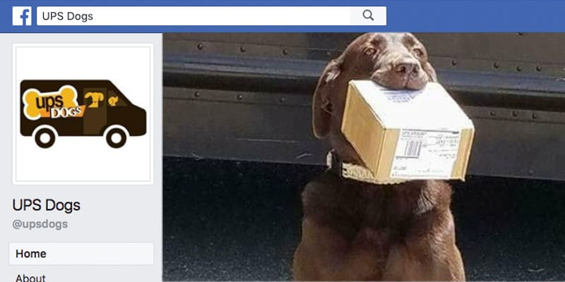 UPS Dogs Facebook Page
