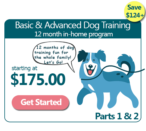 12 Month Basic & Advanced In-Home Dog Training Program