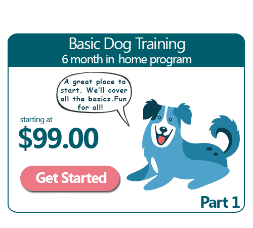 6 Month Basic In-Home Dog Training Program