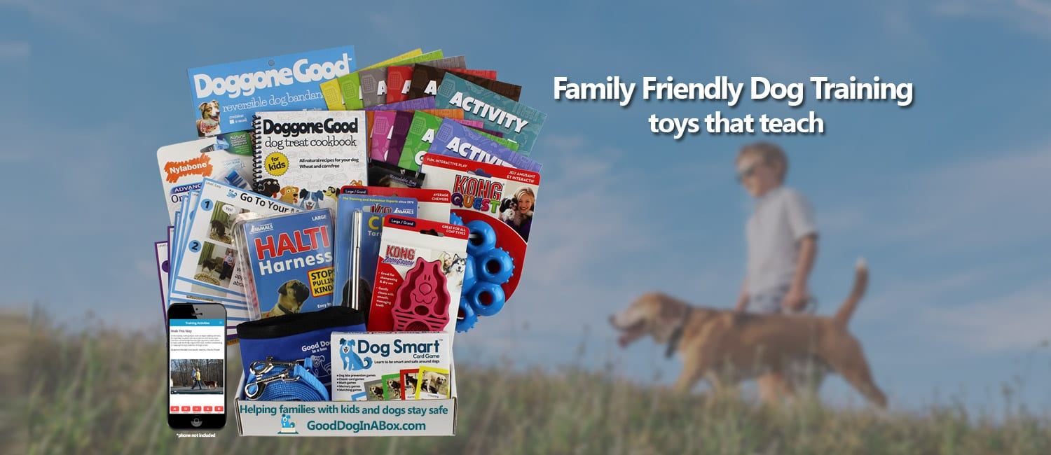 In-home Dog Training Subscription Box