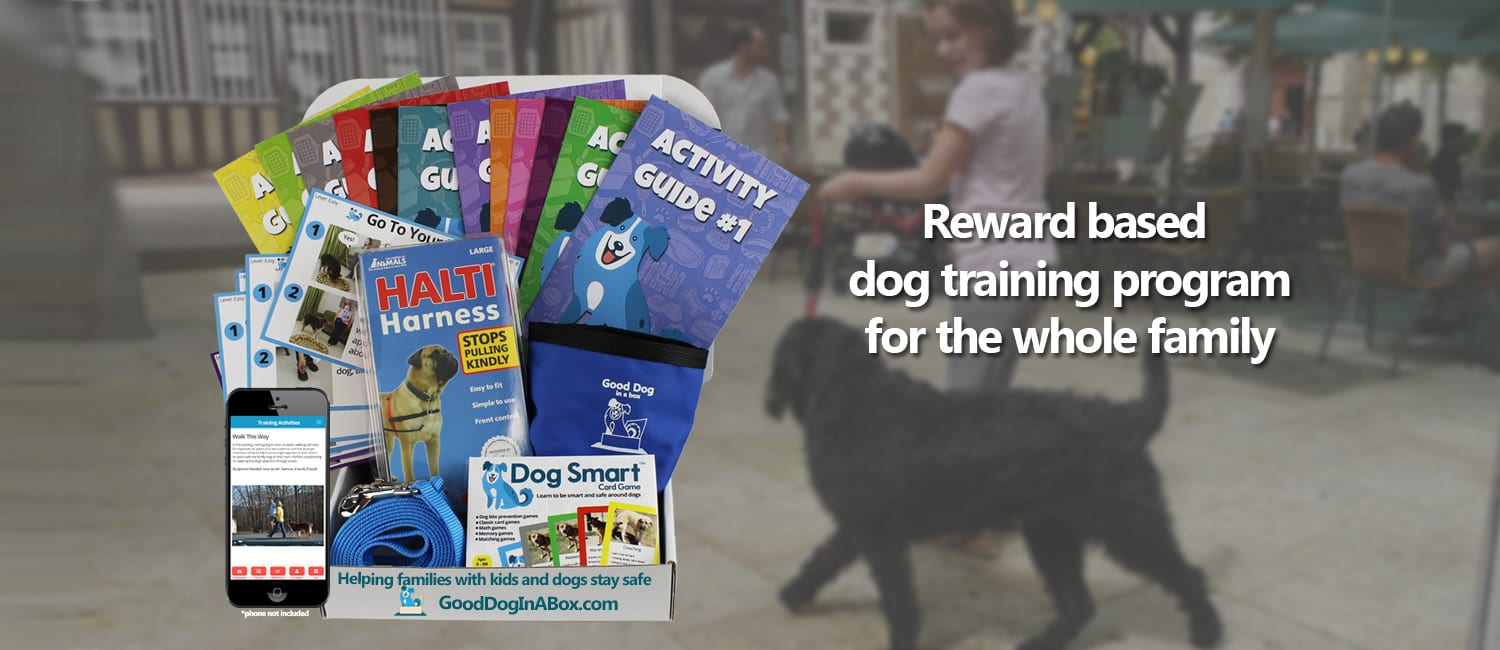 reward-based-dog-training-program-for-families1