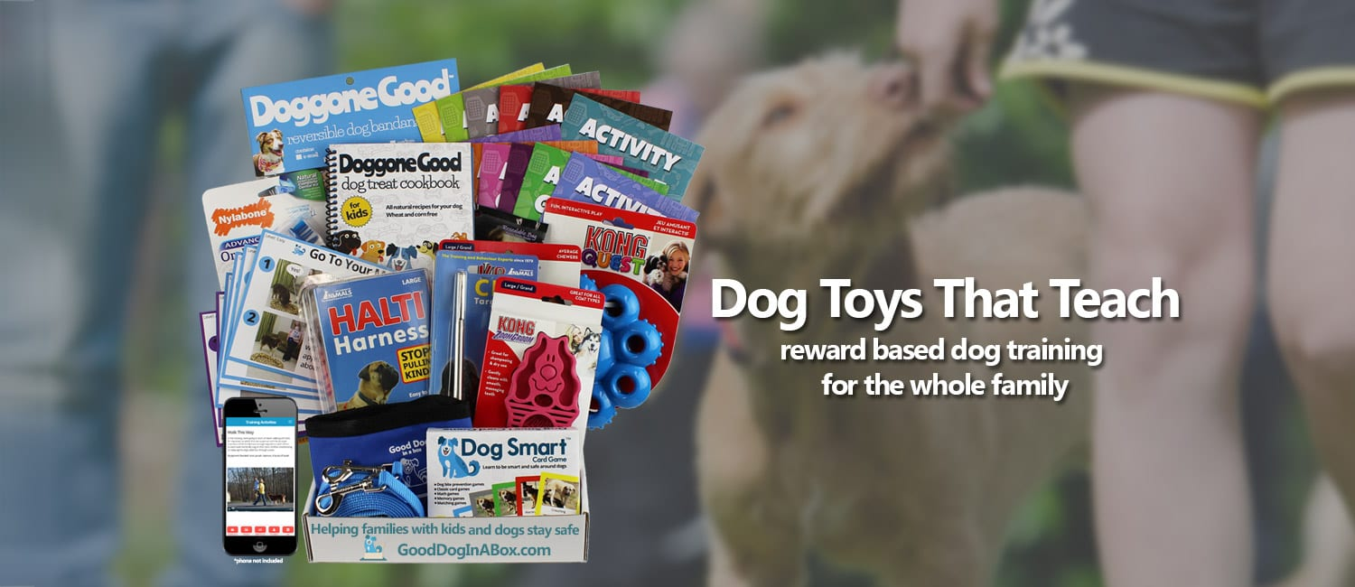 Reward Based Dog Training Program For Families