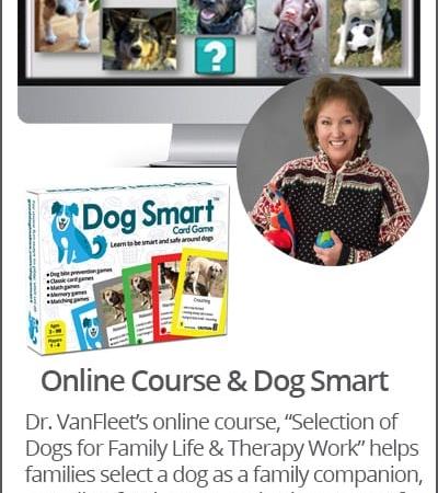 Dr. Risë VanFleet's Online Course + Dog Smart