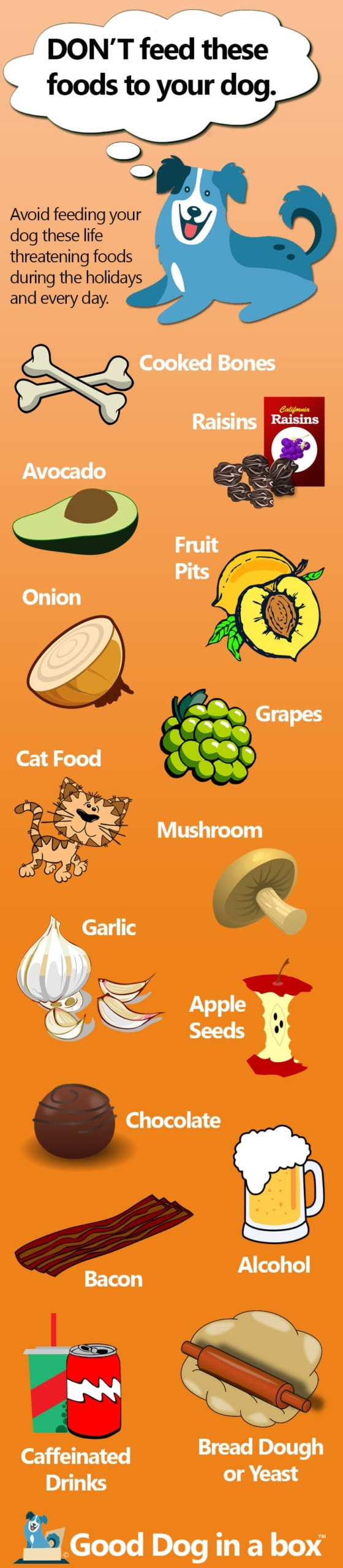 Don't Feed Your Dog These Foods Infographic