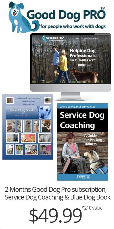 Service Dog Webinar Offer