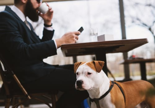 Dogs in Restaurants