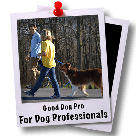 For Dog Professionals
